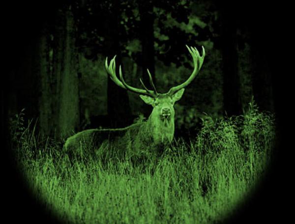 """红外夜视仪,黑夜中明亮的""""眼睛"""""""