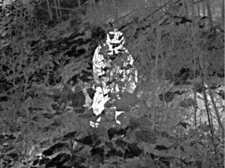 红外热像仪在野外救援的作用