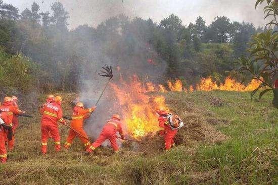 红外热像仪在森林防火中的重要作用