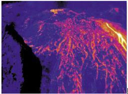 生物质能废料堆红外热成像防火监控应用