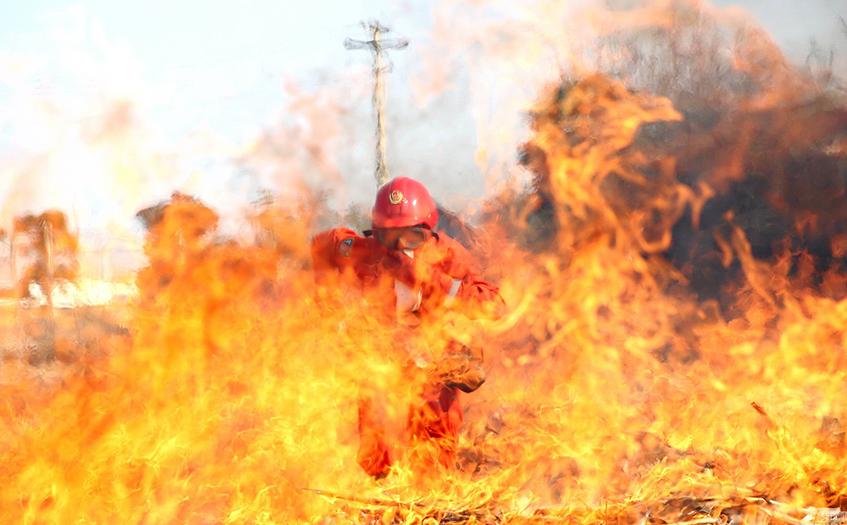 红外热像仪森林防火高效监测方法